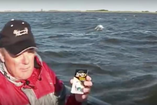Fishing Reports | South Dakota Glacial Lakes and Prairies